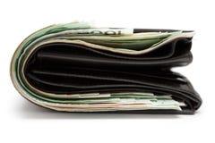 тучное портмоне Стоковое фото RF