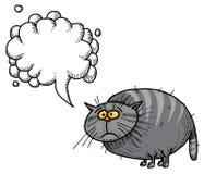 Тучное cat-100 Стоковые Изображения