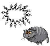 Тучное cat-100 Стоковое Фото