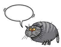 Тучное cat-100 Стоковое фото RF