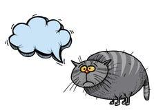 Тучное cat-100 Стоковая Фотография