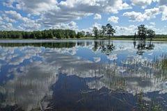 Тучные белые облака отраженные в озере стоковые изображения rf