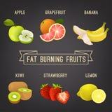 Тучные плодоовощи горения иллюстрация штока