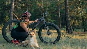 Тучные fatbike велосипеда также вызванные или велосипед тучн-автошины в катании лета в лесе Стоковое фото RF