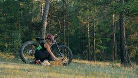 Тучные fatbike велосипеда также вызванные или велосипед тучн-автошины в катании лета в лесе Стоковое Фото