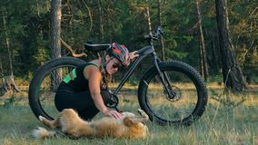 Тучные fatbike велосипеда также вызванные или велосипед тучн-автошины в катании лета в лесе Стоковая Фотография RF
