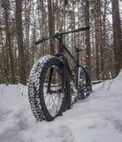 Тучный велосипед в снежном лесе стоковое изображение rf