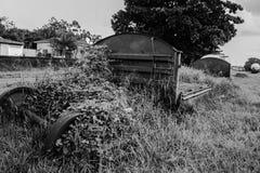 Туша фуры стоковое изображение rf
