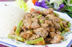 Тушёное мясо говядины с зелеными фасолями и рисом Стоковые Фото