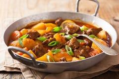 Тушёное мясо говядины с картошкой и морковью Стоковые Фотографии RF