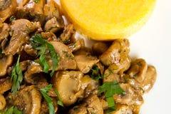 Тушёное мясо гриба Стоковое фото RF