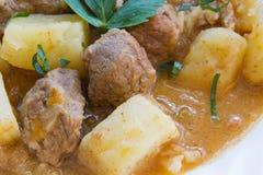 Тушёное мясо мяса Стоковые Фотографии RF