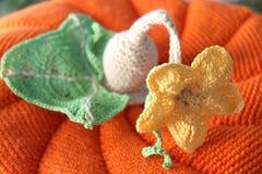 Тыква берета вязания крючком Стоковые Фотографии RF