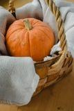 Тыква в корзине Стоковая Фотография RF