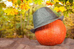 Тыква в шляпе на мешке Стоковые Фото