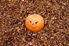 Тыква Джек-o-фонарика хеллоуина страшная Стоковое Фото
