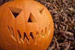 Тыква Джек-o-фонарика хеллоуина страшная Стоковое Изображение RF