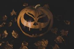 Тыква для хеллоуина и высушенных листьев Стоковое Изображение