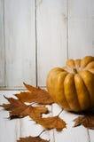 Тыква и кленовые листы Стоковое Изображение RF