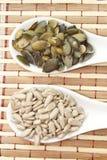 Тыква и семена подсолнуха стоковая фотография
