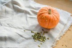 Тыква и семена тыквы Стоковые Изображения RF