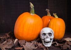 Тыква и череп на хеллоуин Стоковые Изображения