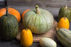 Тыква и zucchini Стоковое Фото