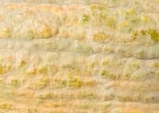 тыква корки Стоковая Фотография RF