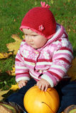 тыква младенца Стоковая Фотография RF