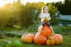 Тыква прелестный обнимать маленькой девочки большая Стоковая Фотография