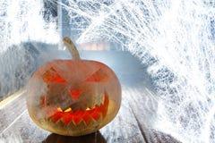 Тыква хеллоуина в сети ночи Стоковые Изображения RF