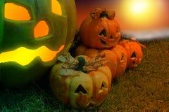 Тыква хеллоуина в мистическом лесе на ноче Предпосылка ужаса Стоковая Фотография