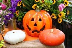 Тыква хеллоуина декоративная с реальными тыквами и цветками на заднем плане Стоковое Изображение