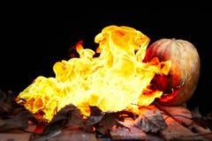 Тыква хеллоуина извергая пламена огня на черной предпосылке Стоковое фото RF