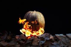 Тыква хеллоуина извергая пламена огня на черной предпосылке Стоковая Фотография