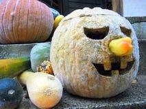 Тыква хеллоуина, 4 Стоковые Фото