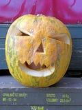 Тыква хеллоуина, 7 Стоковые Фотографии RF