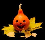 Тыква 3 хеллоуина Стоковая Фотография