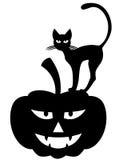 тыква halloween кота иллюстрация вектора