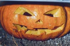 тыква halloween предпосылки Стоковые Фото