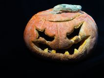 тыква halloween старая Изолированный на черном backgropund Стоковые Фото