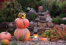 тыква halloween Стоковое Изображение RF