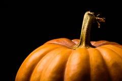 Тыква Haloween с фундуками листьев Стоковая Фотография RF