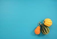Тыквы апельсина, зеленых и желтых на предпосылке teal Стоковое Фото