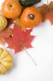 Тыквы благодарения и листья осени Стоковые Изображения