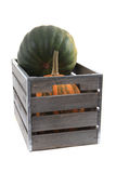 тыквы в деревянной коробке Стоковое Изображение