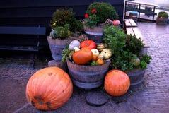 Тыквы в корзине и декоративных corns Defocused красочные листья на заднем плане Стоковые Фото