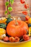 тыквы жизни halloween все еще Стоковые Фото