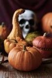 Тыквы и череп на хеллоуин Стоковые Изображения RF