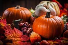 Тыквы на благодарение и хеллоуин Стоковые Изображения RF